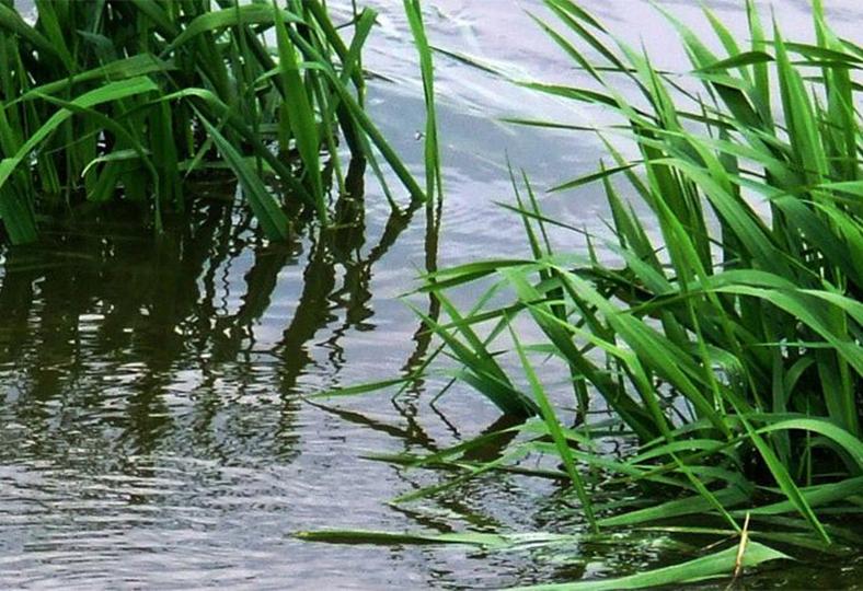 Oroliga husägare fruktar kraftig vårflod