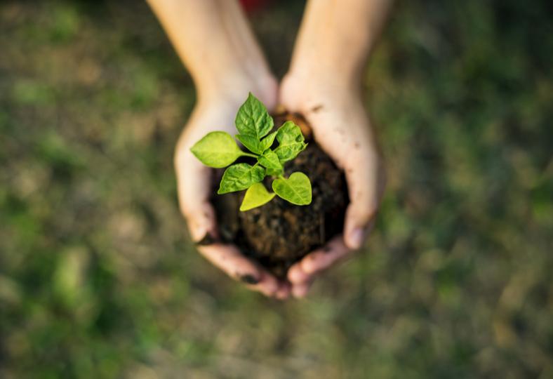 Folksamgruppen stärker hållbarhetsnivån i sina utländska aktier värda 80 miljarder kronor