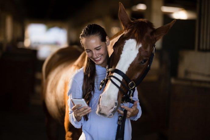 veterinär och häst