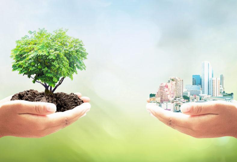 Webbinarium: Fossilfria investeringar, 26 oktober